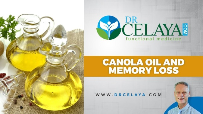 canoloa oil memeory loss