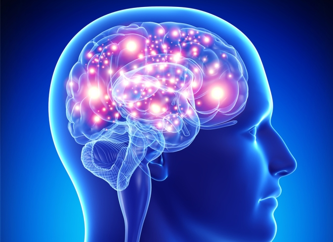 brain pink
