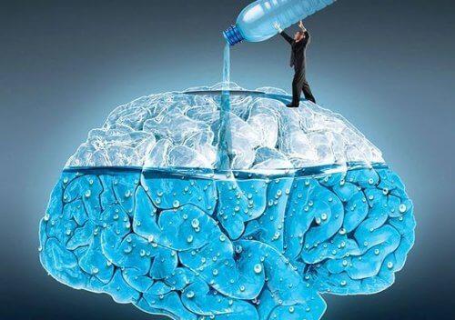 Drink-water-brain